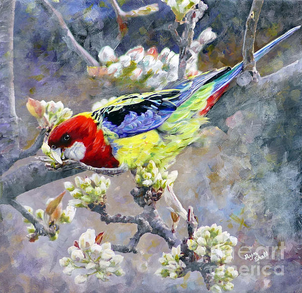 Easter Rosella in Nashi Pear by Ryn Shell